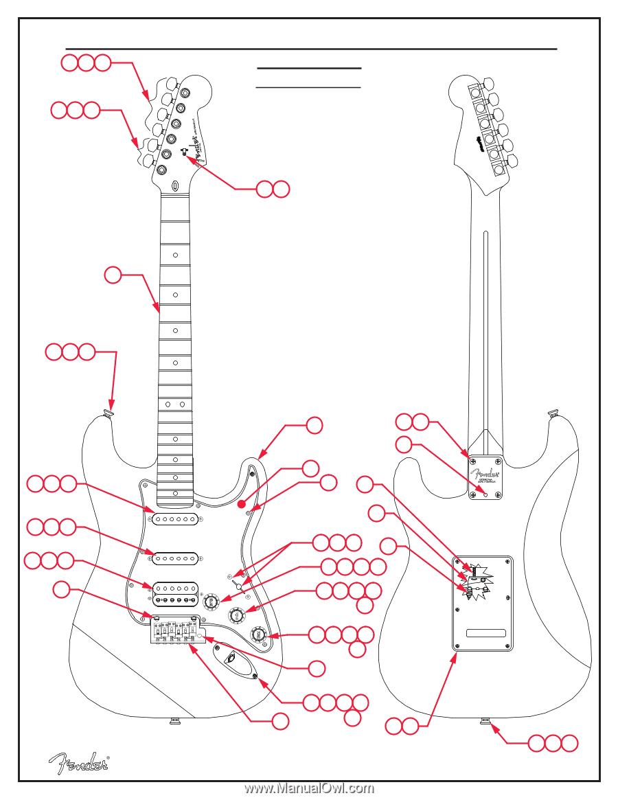 Diagram Fender Pots Strat Wiring Diagram Fender Hss Wiring Diagram Hss