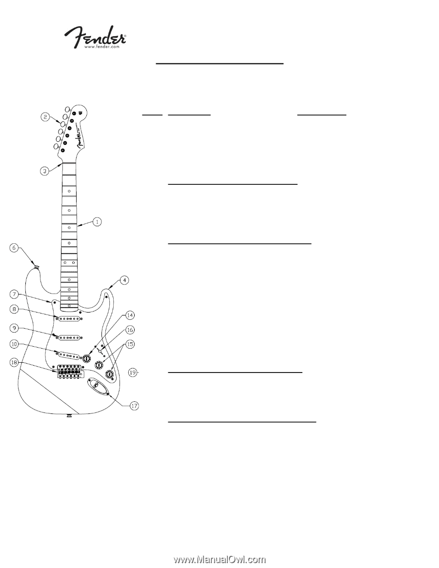 Fender Eric Johnson Stratocaster Maple Strat Wiring Diagram All Specifications Subject To Change Without Notice