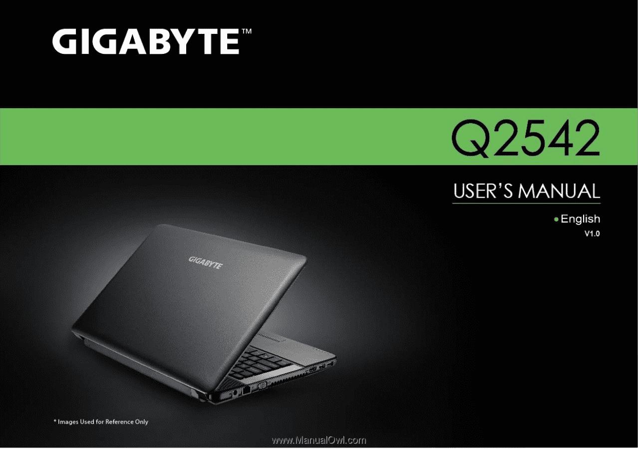 Gigabyte Q2542C | Manual
