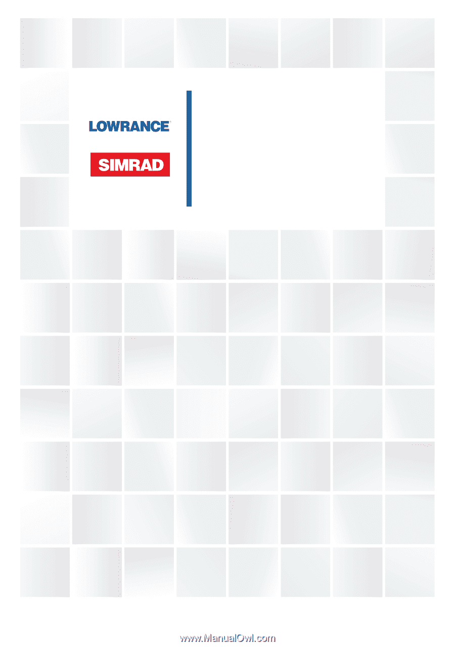 Lowrance TotalScan Skimmer | TotalScan Transducer