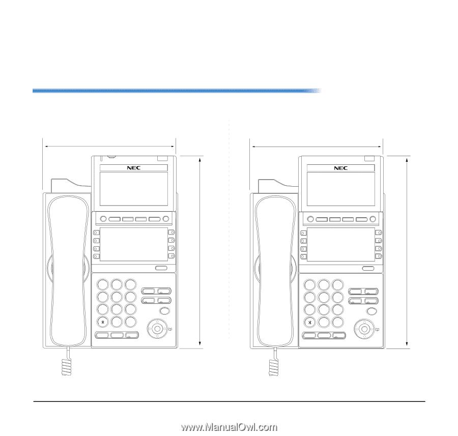 NEC DTL-24D-1 | User Manual