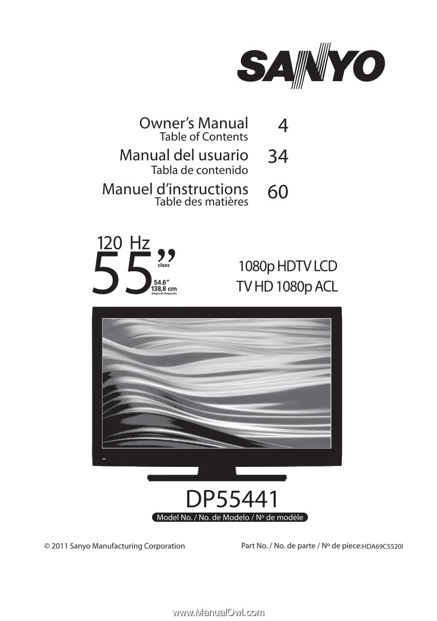 Sanyo DP55441 | Owners Manual