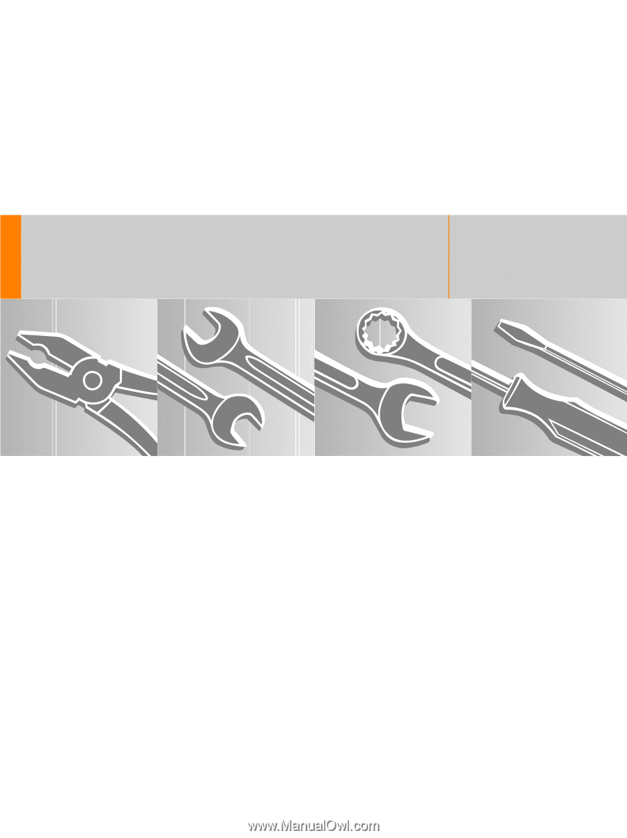 Stihl BR 600 MAGNUM | User Guide