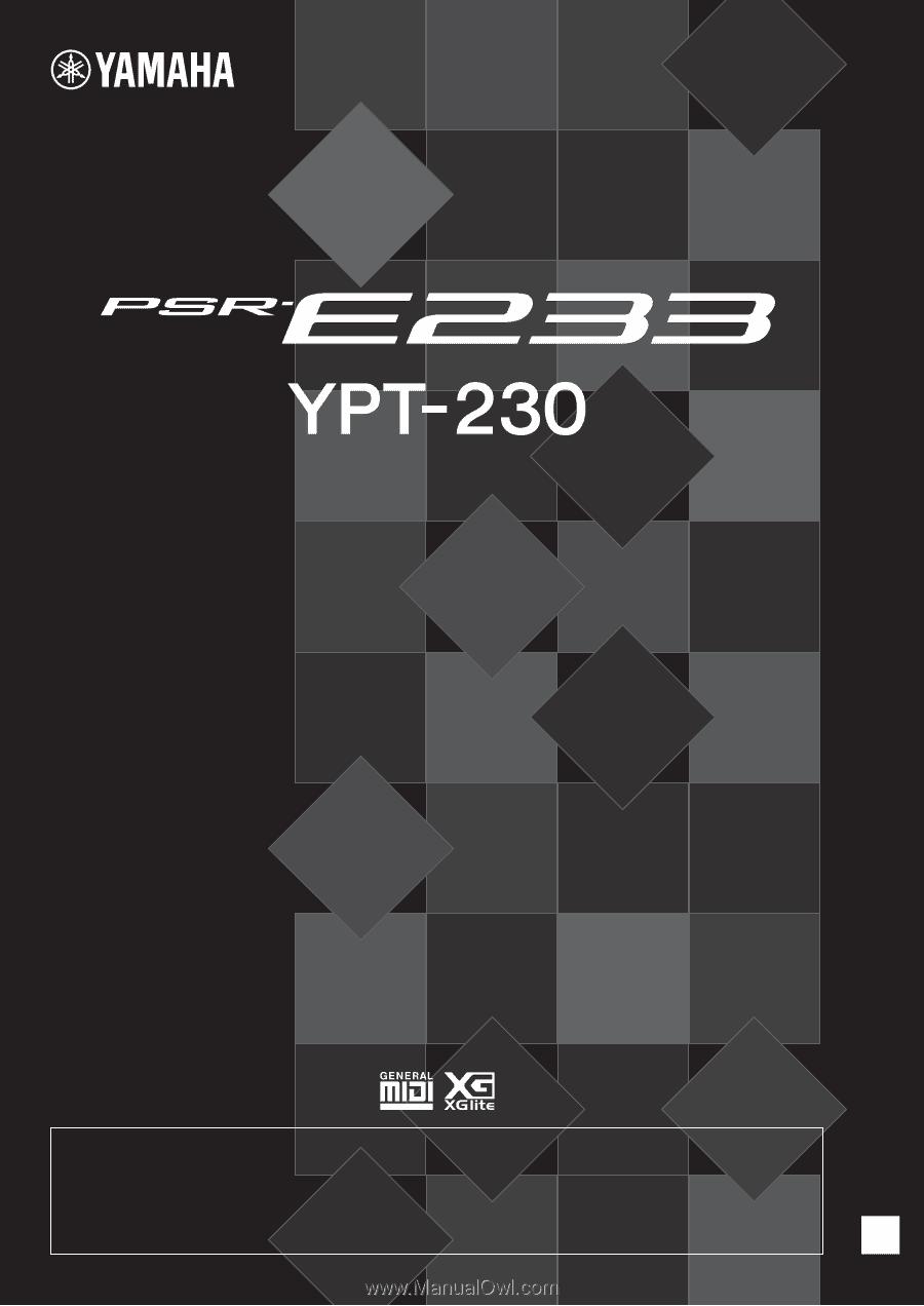 Yamaha Ypt 230 Owners Manual