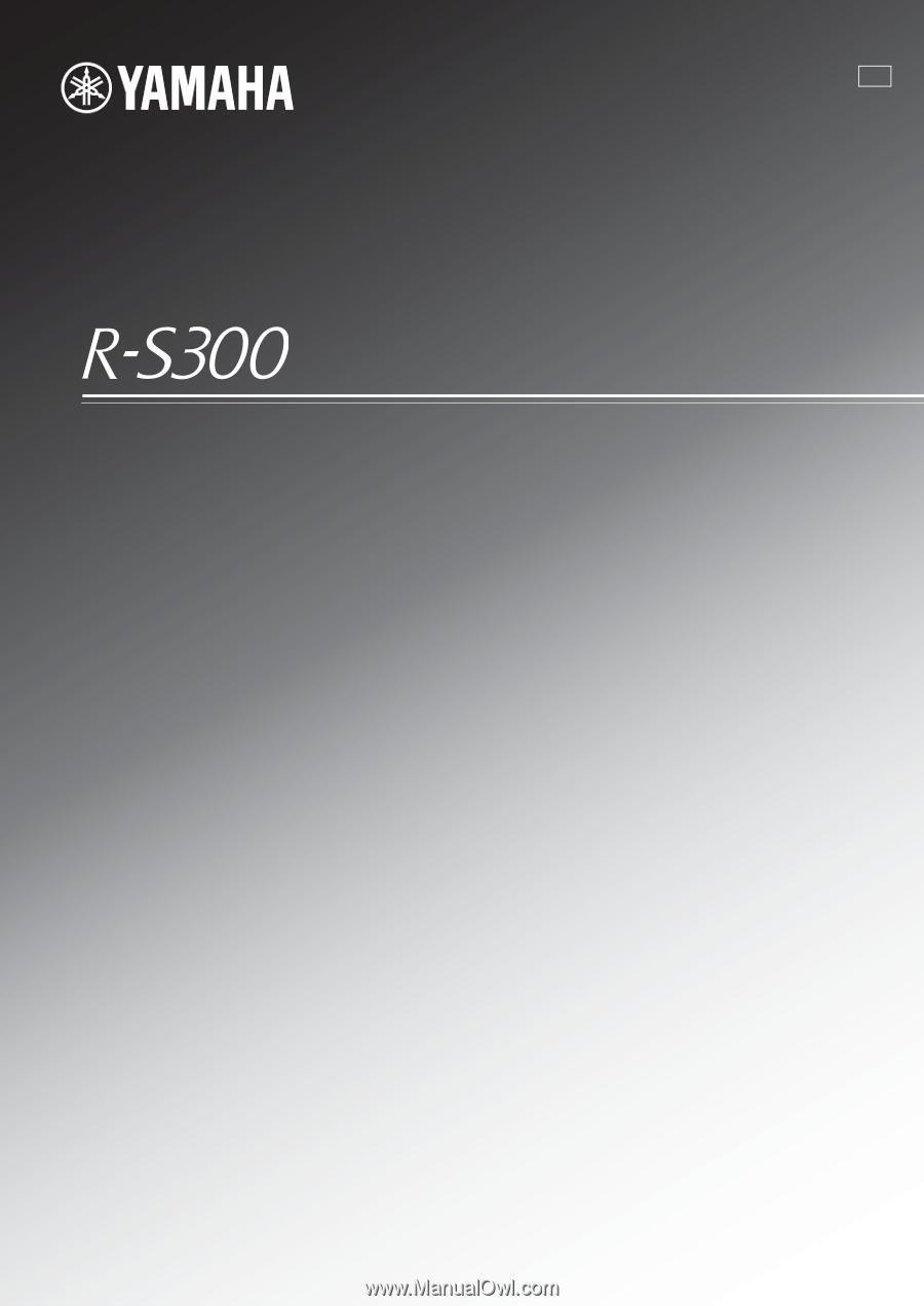yamaha r s300 owners manual. Black Bedroom Furniture Sets. Home Design Ideas